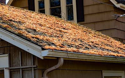 What is the Best Season for Roof Work