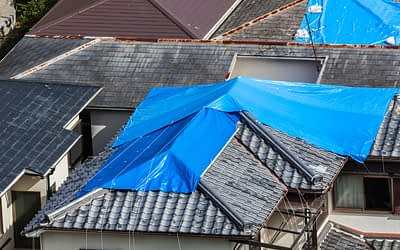 Roof Damage by Storm: What You Need to Know