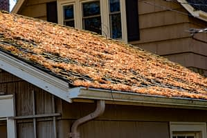 Why Fall is the Best Season for Roof Work